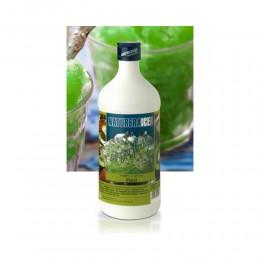 Sirop Aromatisant Kiwi 750ml