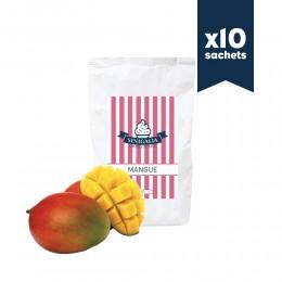 Mix à granité Mangue Sinigalia x10
